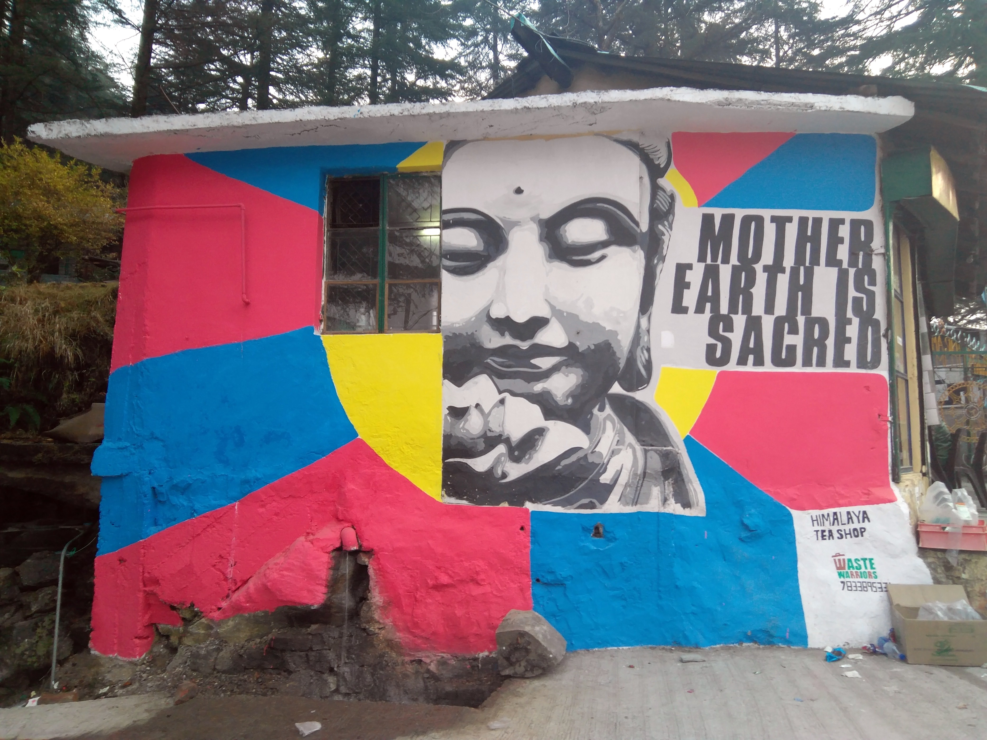 Waste Warriors Buddha mural Himalayan Tea Shop Dharamkot